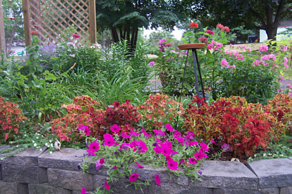 Raised Bed Garden Landscape Blocks Kittycooks